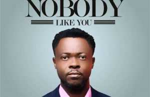 Dimel felix - nobody like you mp3 - download.jpg