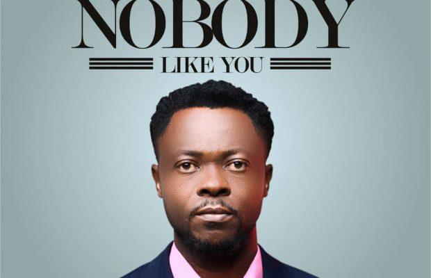 Dimel felix - nobody like you mp3 - download.jpg